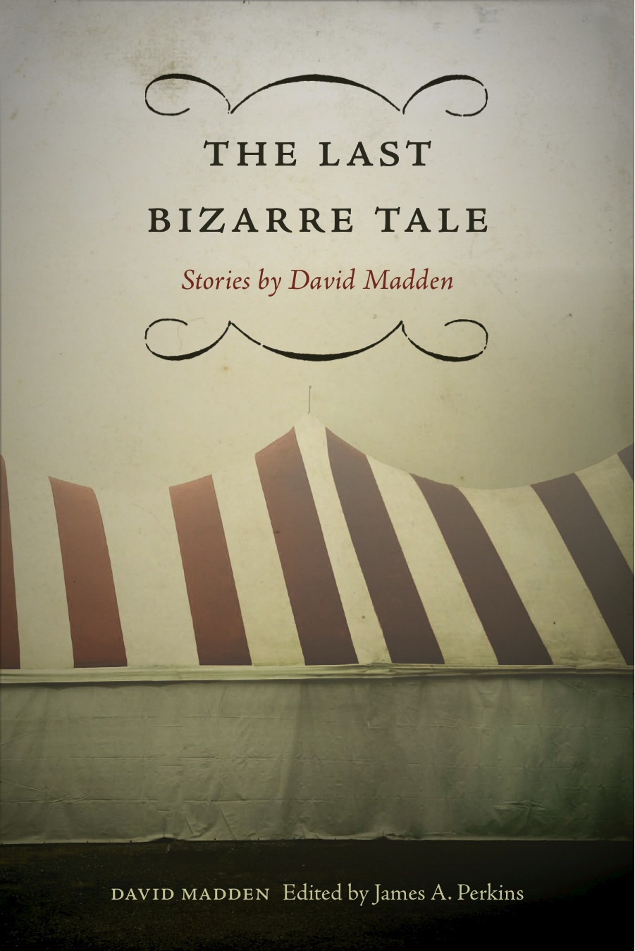 The Last Bizarre Take - Latest novel by David Madden